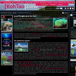 La Plongée pour les NULS à Koh Tao Thaïlande