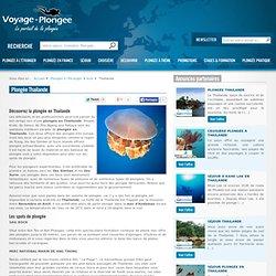 plongee Thailande : croisiere, plongee avec les requins, Thailan