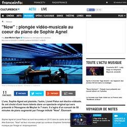 """""""Now"""" : plongée vidéo-musicale au coeur du piano de Sophie Agnel"""