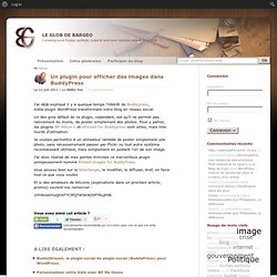 Un plugin pour afficher des images dans BuddyPress