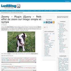 Zoomy – Plugin jQuery – Petit effet de zoom sur image simple et sympa