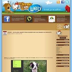 Zoomy - Un plugin jQuery pour zoomer sur vos images ou produits