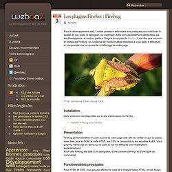 TOOLBOX - Firebug - Les plugins Firefox : Firebug