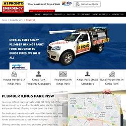Plumber Kings Park - 2148 NSW