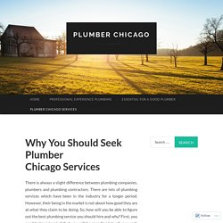 Why You Should Seek Plumber Chicago Services