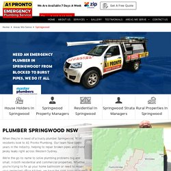 Plumber Springwood - 2777 NSW