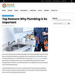 Top Reasons Why Plumbing is So Important - Feed Inspiration