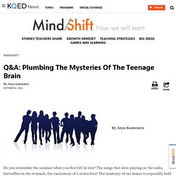 Q&A: Plumbing The Mysteries Of The Teenage Brain