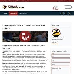 Drain Cleaning Salt Lake City