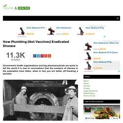 How Plumbing (Not Vaccines) Eradicated Disease - ORGANIC AND HEALTHY