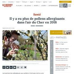 Il y a eu plus de pollens allergisants dans l'air du Cher en 2018