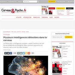 Plusieurs intelligences détectées dans le cerveau