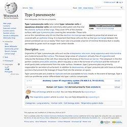 Type I pneumocyte