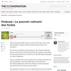 Podcast : Lepouvoir calmant desforêts