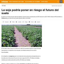 La soja podría poner en riesgo el futuro del suelo