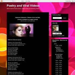 Poetry and Viral Videos