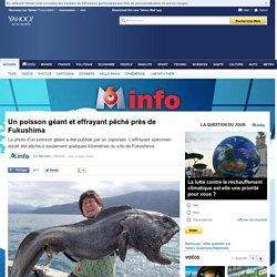 Un poisson géant et effrayant pêché près de Fukushima