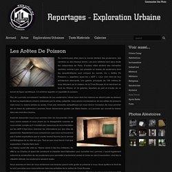 Les Arêtes De Poisson / Urbex.Me - Reportages Exploration Urbaine