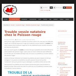 Le site du Poisson Rouge - Trouble vessie natatoire