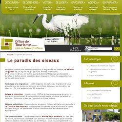 Les Isles du Marais poitevin, le paradis des oiseaux