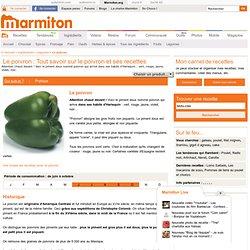 Le poivron : Tout savoir sur le poivron et ses recettes