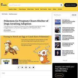 Pokemon Go Program Clears Shelter of Dogs Awaiting Adoption