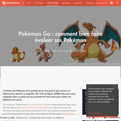 Pokémon Go : comment bien faire évoluer ses Pokémon - Pop culture