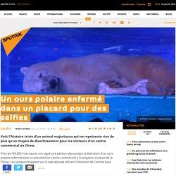 Un ours polaire enfermé dans un placard pour des selfies