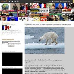 La photo d'un ours polaire squelettique qui alerte le monde sur la fonte des glaces