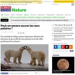 Peut-on encore sauver les ours polaires ? - 16 décembre 2010