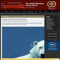 Polar Bear Scientists May Be Hiding Good News