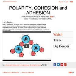 POLARITY, COHESION and ADHESION