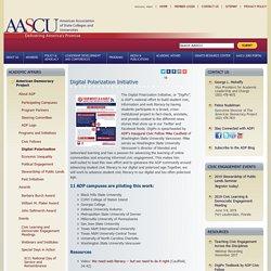 Academic Affairs - ADP Digital Polarization Initiative