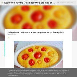 Polenta aux tomates confites sur lit de courgette