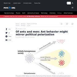 Of ants and men: Ant behavior might mirror political polarization
