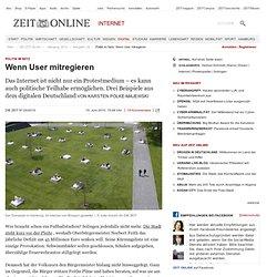 Politik im Netz: Wenn User mitregieren
