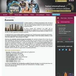 Salon des risques majeurs des états – Economie politique internationale - Milipol Qatar 2014