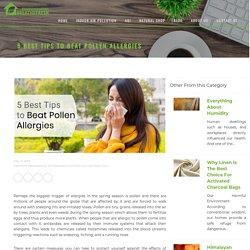 5 Best Tips to Beat Pollen Allergies - BreatheFresh
