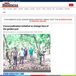 GRAPHIC BUSINESS 20/11/18 Cocoa pollination initiative to change face of the golden pod