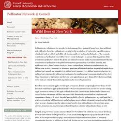 Pollinator Network @ Cornell