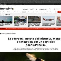 AFP 14/08/17 Le bourdon, insecte pollinisateur, menacé d'extinction par un pesticide néonicotinoïde (thiaméthoxame)