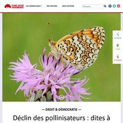 Déclin des pollinisateurs : dites à la Commission européenne d'agir