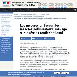MEDM 03/03/17 Les mesures en faveur des insectes pollinisateurs sauvage sur le réseau routier national