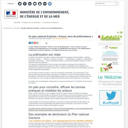 MEDM 07/04/16 Un plan national d'actions « France, terre de pollinisateurs »