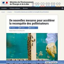 MEDM 22/11/16 De nouvelles mesures pour accélérer la reconquête des pollinisateurs