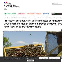 Protection des abeilles et autres insectes pollinisateurs : le Gouvernement met en place un groupe de travail pour renforcer son cadre réglementaire