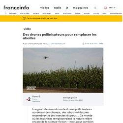 Des drones pollinisateurs pour remplacer les abeilles