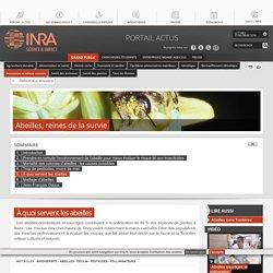 Abeilles, pollinisation et biodiversité