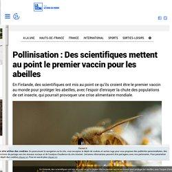 LA VOIX DU NORD 14/12/18 Pollinisation Des scientifiques mettent au point le premier vaccin pour les abeilles
