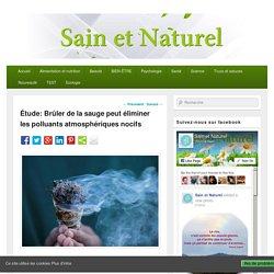 Étude: Brûler de la sauge peut éliminer les polluants atmosphériques nocifs